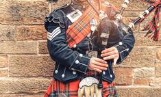 вечер добрый шотландский виски россию