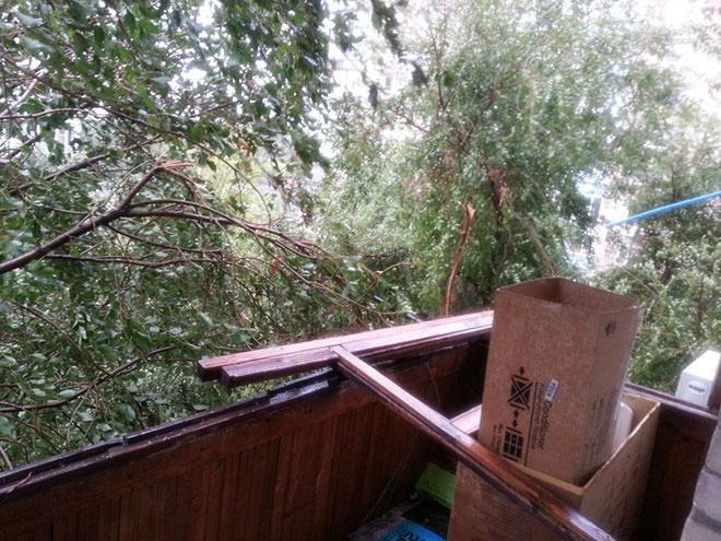 Ураган в Ростове 24 сентября 2014 фото