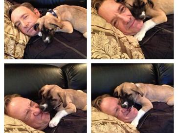 Кевин Спейси и собака Бостон