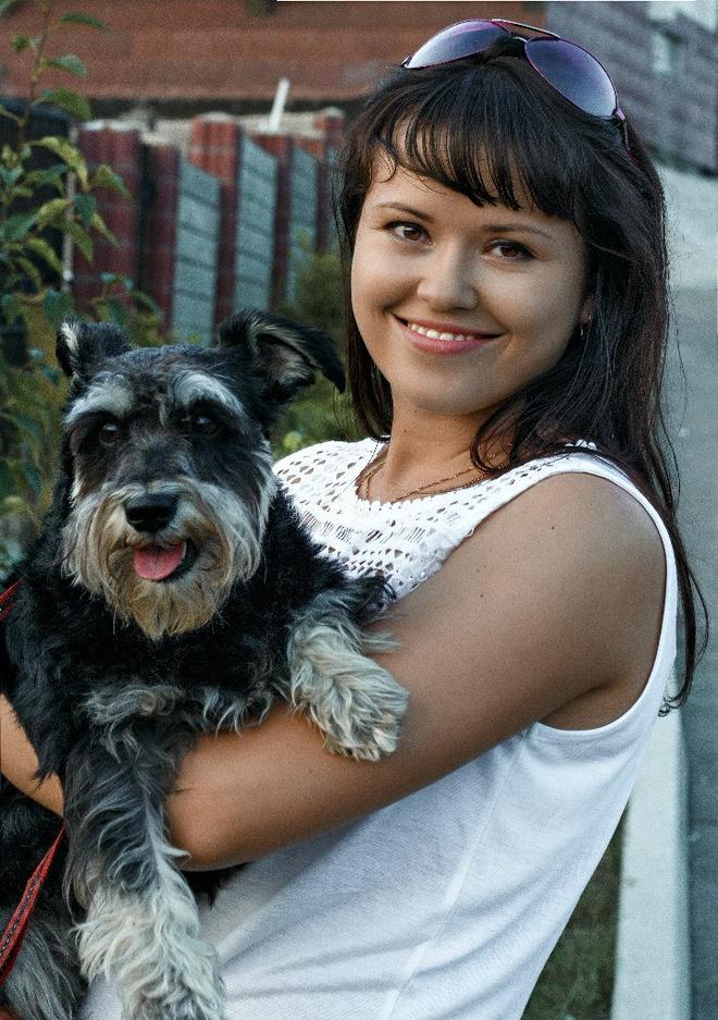 собака породы цвергшнауцер