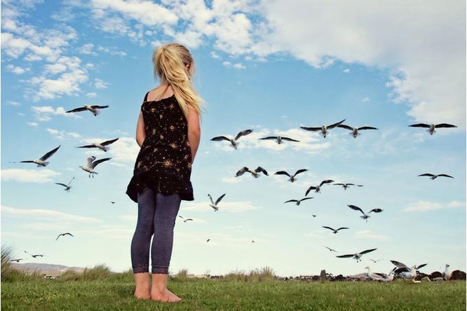 Ребенок и стая птиц