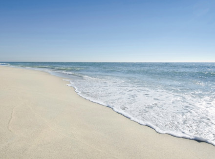 Берег океана