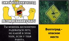 Лето по-волгоградски: лучшие мемы июня