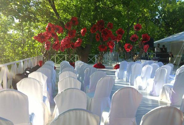 Свадьба Дакоты и Соколовского фото