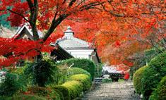5 причин отправиться осенью в Японию