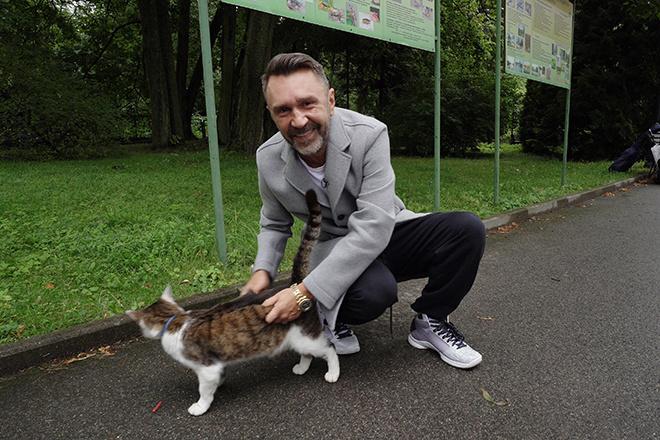 Дождались: Шнуров будет вести программу о кошках