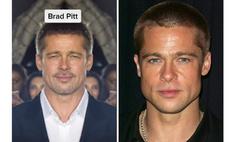 выглядели знаменитости лица абсолютно симметричными фото видео