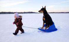 7 дел, которые обязательно нужно сделать зимой вместе с ребенком