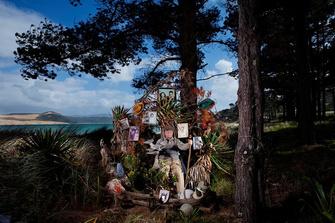 Дэннис Барнс в своем саду на берегу Опонони, Новая Зеландия
