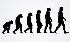 Глава патриаршей комиссии по вопросам семьи: «Теория Дарвина совершенно ненаучна»