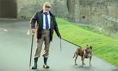 Самая одинокая собака в мире снялась в «Трансформерах»