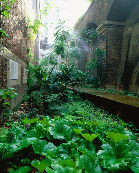 Садовые дорожки: практичные советы | галерея [3] фото [6]