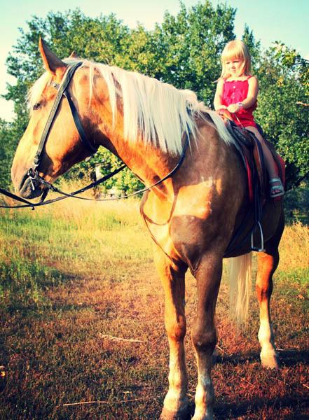 Ярославе Дегтяревой из проекта «Голос. Дети – 3» подарили лошадь