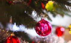 В конце ноября в Кемерово установят новогоднюю елку