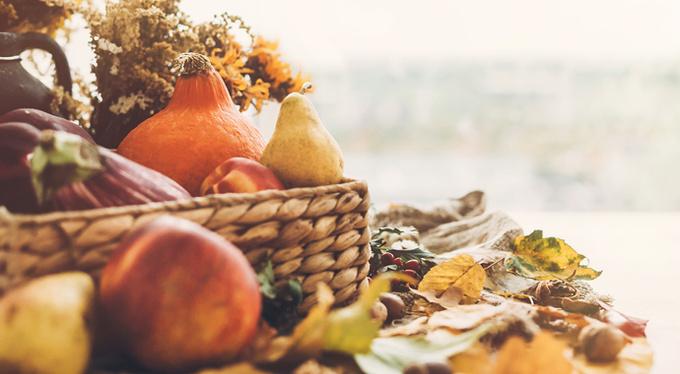 Какие овощи помогут пережить холодное время года