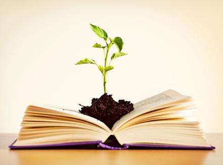 Книга и росток