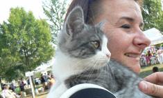10 животных, которые обрели свой дом в Воронеже