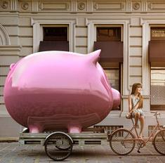 Почему родившимся в год Свиньи нужно быть осторожными