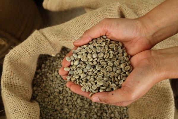 Зеленый кофе для похудения: рецепт
