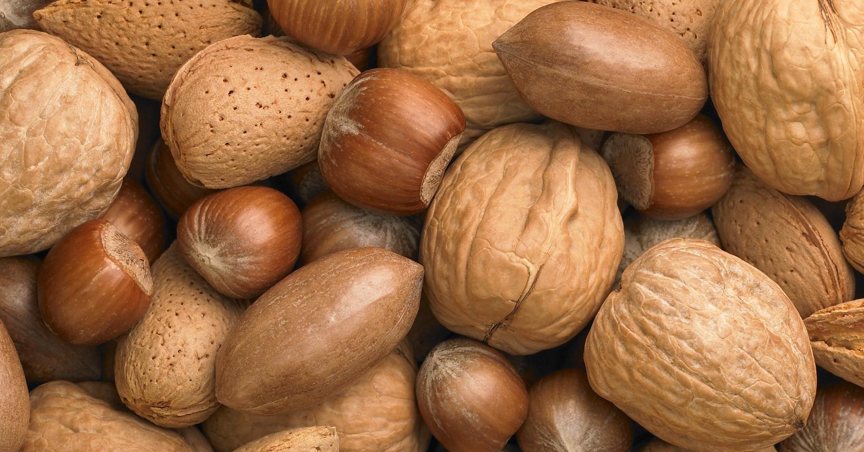 Лесной орех в домашних условиях