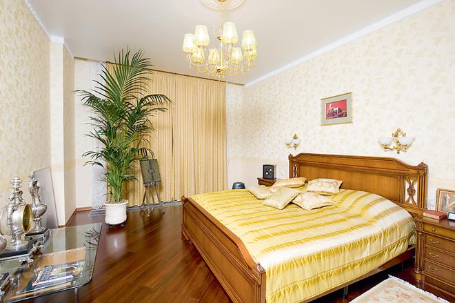 В спальне для гостей стоит пальма, которую Маша регулярно поливает.