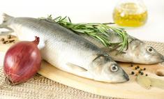 Рецепты разнообразных блюд из сельди