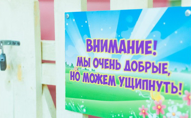 Мини-мисс Woman's Day