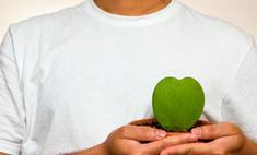 Ученые заставили сердце регенерироваться