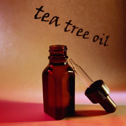 масло чайного дерева от грибка
