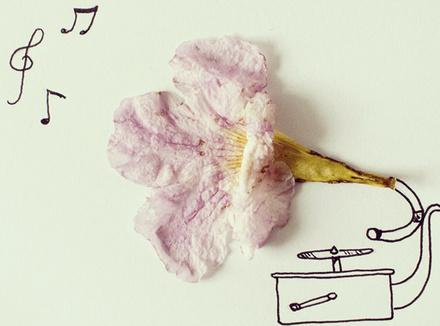 Граммофон из цветка