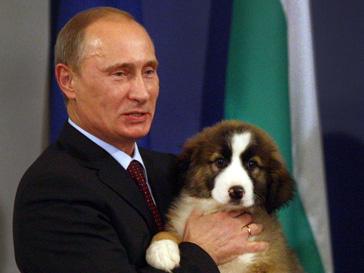 Владимир Путин поговорил о важнейших проблемах