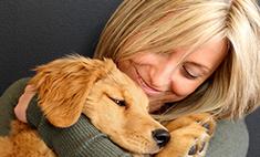 Кто сказал «гав»: 10 самых милых и забавных собак. Голосуй!