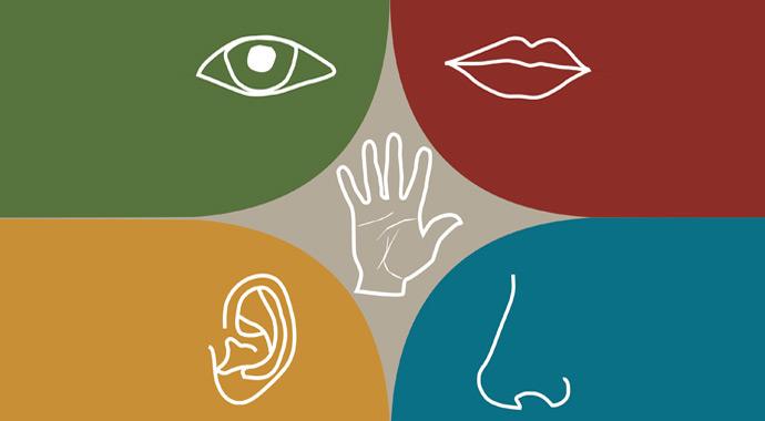 Тест Кто вы: визуал, аудиал или кинестетик?
