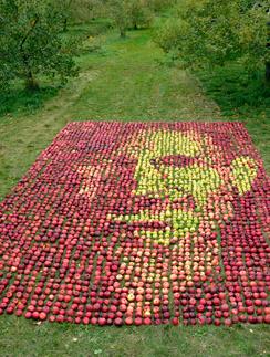 Портрет Стива Джобса из яблок