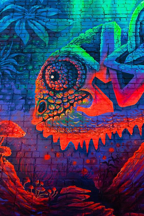 Картина «Хамелеон», фестиваль «Стенограффия», фото