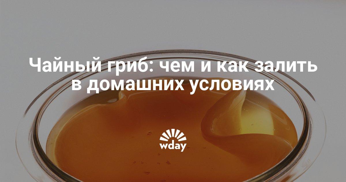 Как сделать чайный гриб в домашних условиях фото 802