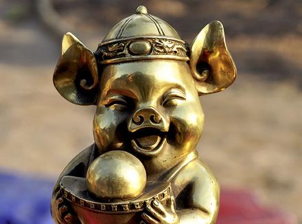 Что принесет год Золотой Свиньи