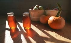 Полезные свойства тыквы с медом для печени