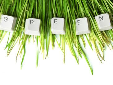 Растения на рабочем месте помогают сотрудникам пережить стресс и справиться с болезнями