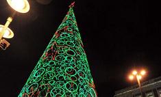 12 cамых красивых новогодних елок