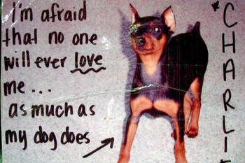 «Боюсь, никто и никогда не будет любить меня так же сильно, как мой пес Чарли»