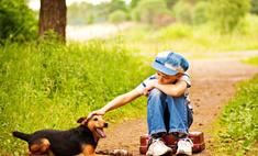 На детях из неблагополучных семей можно заработать