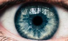ученые установили интеллект зависит размера зрачка