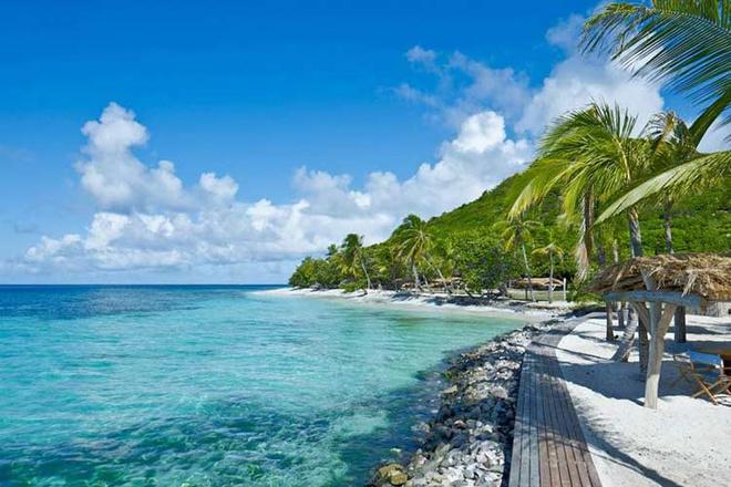 Красивые отели в джунглях лесах на воде