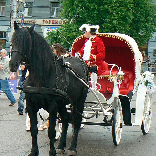 свадебный бум в курске