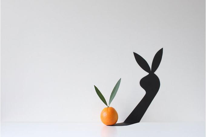 Апельсин и его отражение