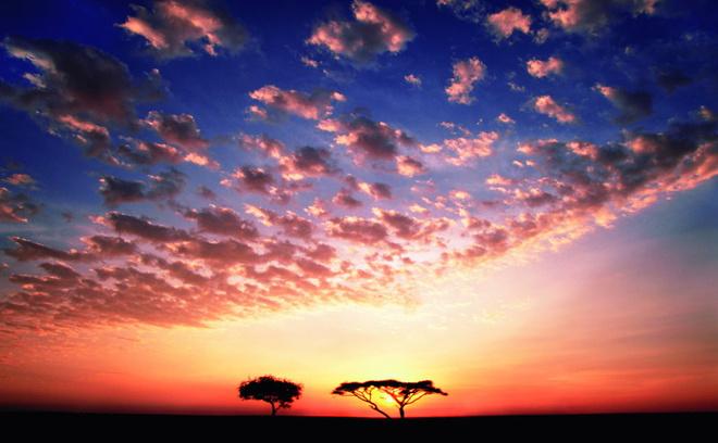 Закат в саванне. А когда деревьев больше — это назвается буш