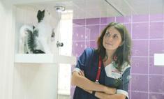 В деле: бизнес-проекты для животных Анны Кондратьевой