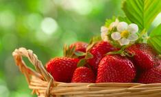 Летняя клубничная диета: реальные отзывы
