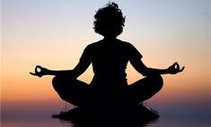 В Москве пройдет встреча с мастером йоги Шри Шри Рави Шанкаром